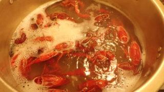 アメリカザリガニ さばき方 食べ方 調理法 レシピ 味