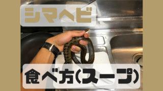 シマヘビ 食べ方 スープ