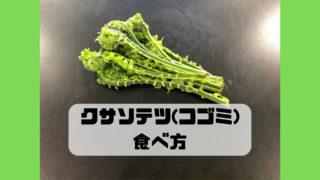 クサソテツ コゴミ 食べ方 味 調理法 レシピ