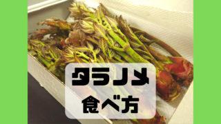 タラの芽 食べ方 調理法 味