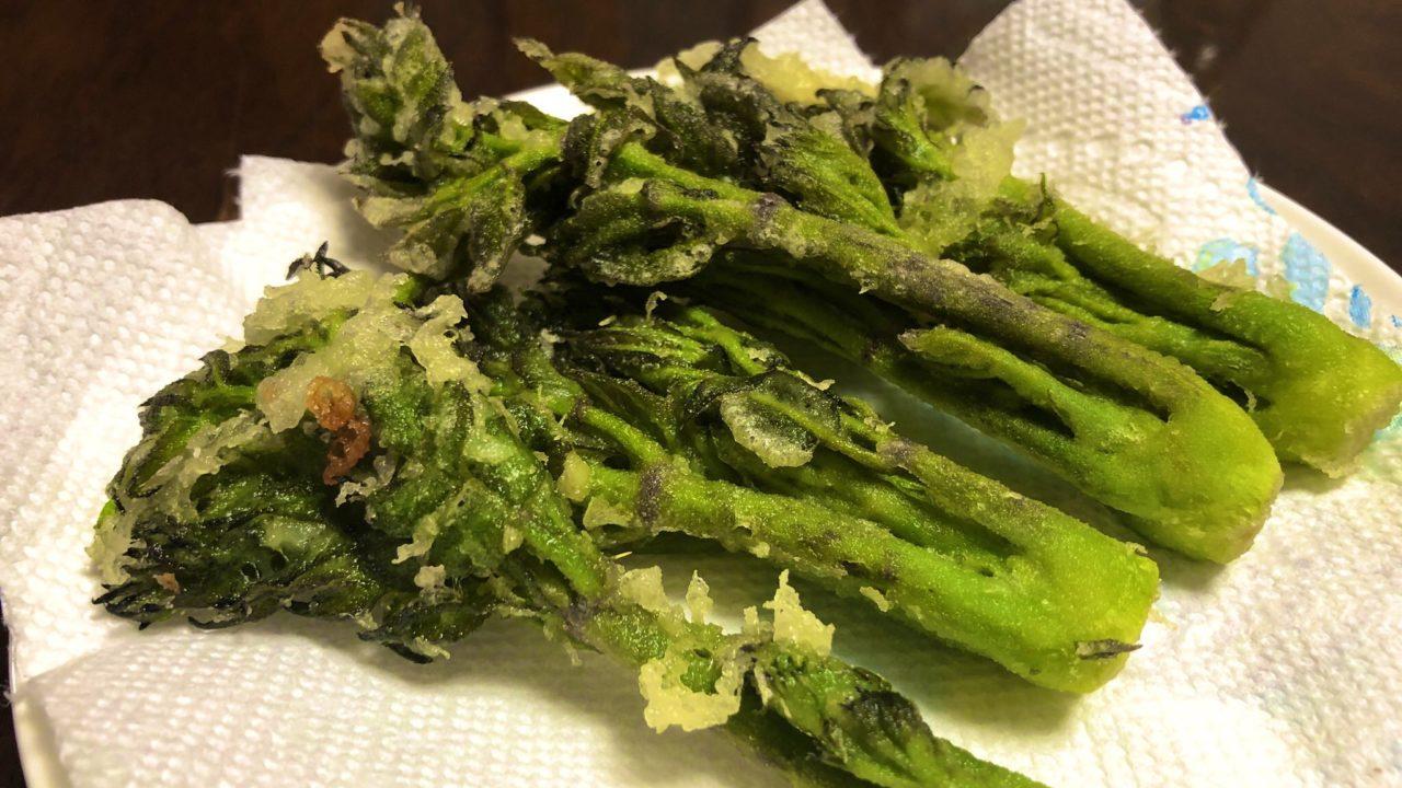 タラの芽 食べ方 調理法 レシピ 味