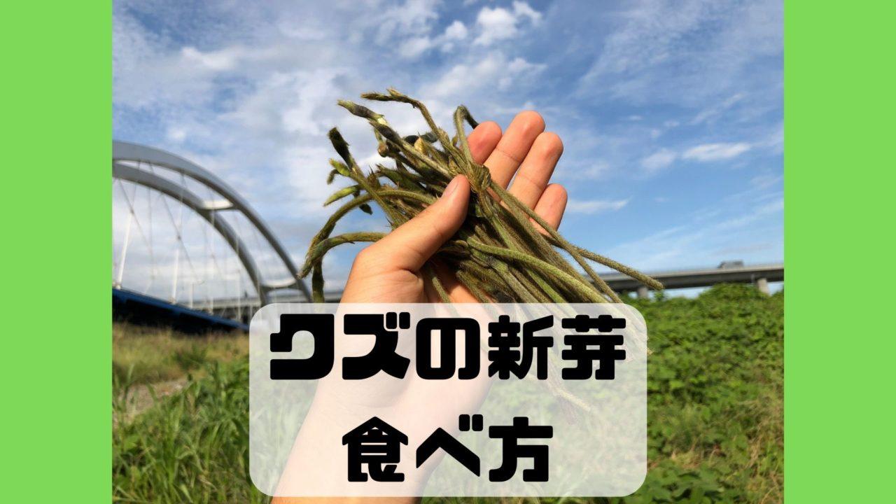 葛 クズ 蔓 新芽 食べ方 調理法 レシピ