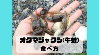 特定外来生物 ウシガエル オタマジャクシ 食べ方 味