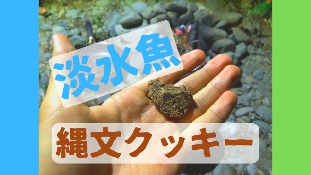 淡水魚 縄文クッキー 作り方 味